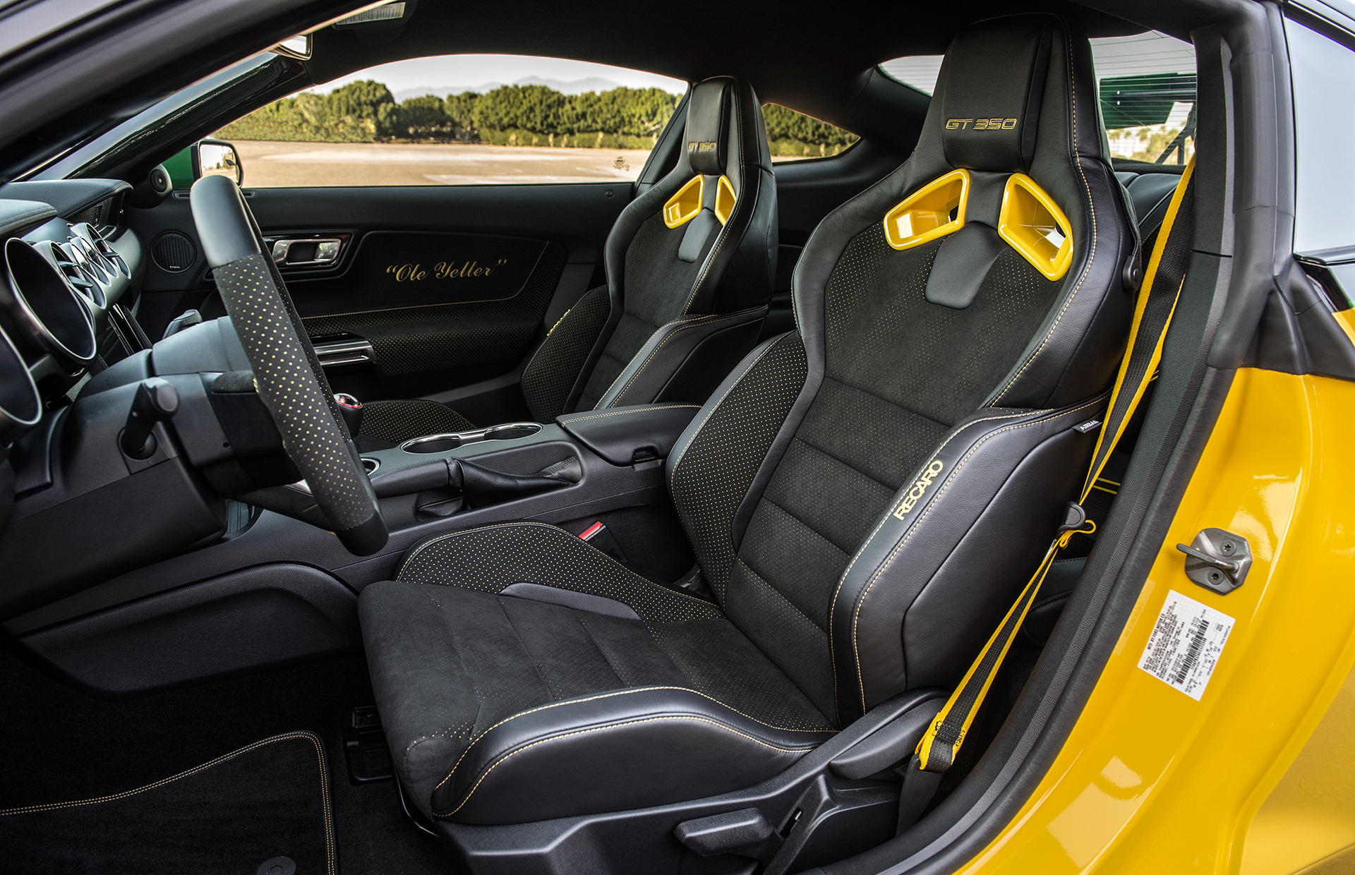 2016 AirVenture Ford Mustang Shelby GT350  Ole Yeller  MAD